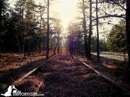 the strange towns of the pine barrens the history