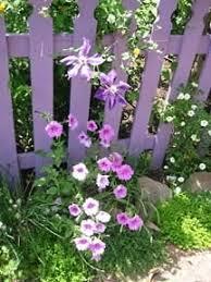 Cottages Gardens - xeriscape a cottage garden dave u0027s garden
