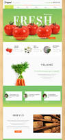 15 wordpress themes for an organic food shop healthy food blog