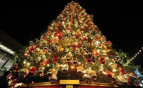 real tree surrounded by colorful garland lights exterior fantastic