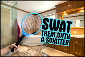 Tiny Flies In Kitchen And Bathroom Ultimate Tricks For Getting Rid Of Fruit Flies In The Bathroom