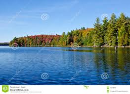 fall colors canoe lake algonquin park stock photography