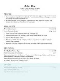 Professional Resume Writers Nyc Write Me Custom Critical Analysis Essay On Presidential Elections