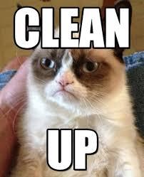 Clean Up Meme - clean grumpy cat meme on memegen