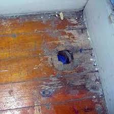 removing carpet tackstrip padding concrete wood sub floors