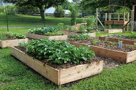 audubon to host raised bed gardening workshop on july 6 news