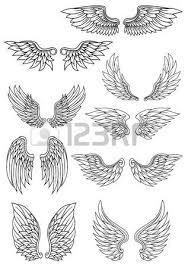 17 429 eagle wings stock vector illustration and royalty free
