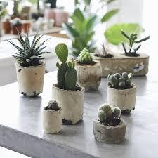 making concrete pots by hester van overbeek makeetc com