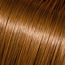 Chestnut Hair Color Pictures Light Chestnut Hair Color Hair Colors Idea In 2017