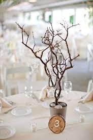 Diy Branches Centerpieces by 22 Best Centerpieces Images On Pinterest Flower Arrangements