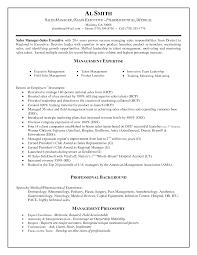 impressive online sales executive sample resume in aldi district