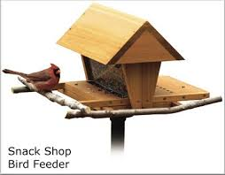 plans for building birdhouses and bird feeders