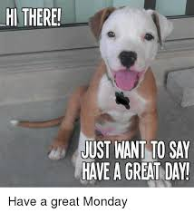 Have A Good Day Meme - hi there just nant to say have a great day have a great monday