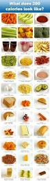 the 200 calorie food guide 200 calories calorie counting and