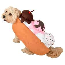 Target Dog Halloween Costumes Easy Halloween Costumes Pets Kinsey U0027s