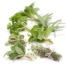 les herbes de cuisine récolter et conserver les aromatiques