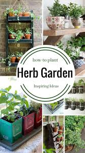 9 herb garden ideas how to plant four generations one roof