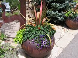great ideas for a patio collection of potted plants description