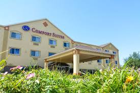 Comfort Inn At The Zoo Omaha Comfort Suites Omaha 2017 Room Prices Deals U0026 Reviews Expedia