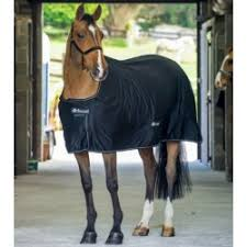 Buccas Rugs Show Rug 160 Gr Kentucky Horse Rugs The Fetlock