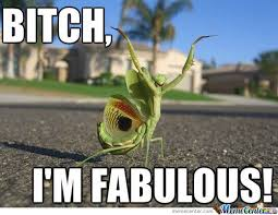 I Am Fabulous Meme - bitch i m fabulous by ted willette 9 meme center