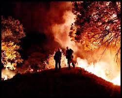 Wildfire Containment by Wildfire In Sequoia National Forest Is 75 Contained La Times