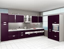 Modular Kitchen Images India by Modular Kitchen Designs India Indian Modular Kitchens Vs European