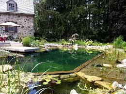 natural swimming pools luxury pools