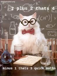 Cat Meme Maker - big shaq cat meme maker make a meme online