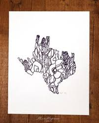 texas bluebonnet state flower drawing giclee print by annatovar