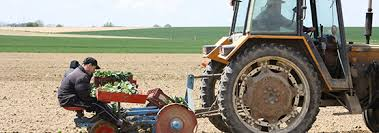 chambre agriculture nord productions légumières chambre d agriculture du nord pas de calais