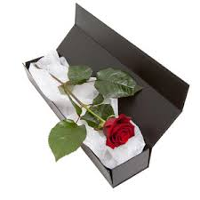 in a box delivery you re the one flowers delivered edinburgh flower shop