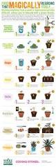 629 best health infographics images on pinterest urban gardening