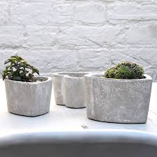 plants pot indoor and outdoor pre tend be curious