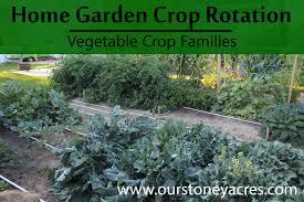 garden crop rotation vegetable crop families stoney acres