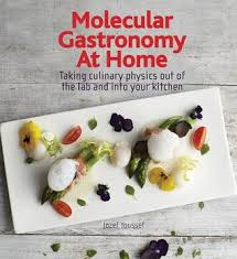 molecular cuisine book molecular gastronomy at home taking culinary physics out of the lab