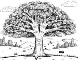 look at why you want to your family tree familytree