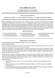 resume summary examples efficiencyexperts us