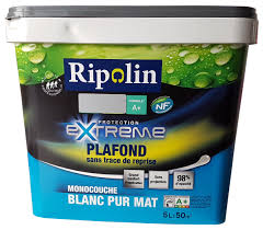 Sous Couche Ripolin by