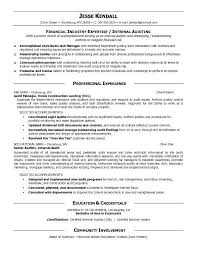 Sample Resume For Tax Preparer Commercial Paper Is A Long Term Source Of Finance How To Write A
