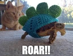 Turtle Memes - roar turtle memes and comics