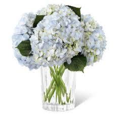 white and blue floral arrangements blue flowers blue flower arrangements bouquets
