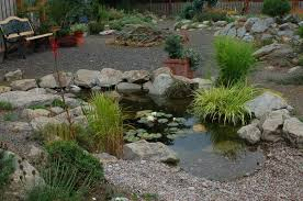 water feature rock garden wild ginger farm