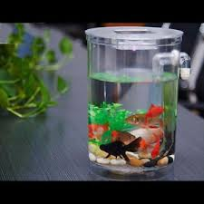 aquarium bureau led mini aquarium fish tank poisson cylindre ecologique maison