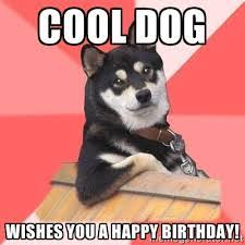 Birthday Dog Meme - top dog happy birthday funny memes 2happybirthday