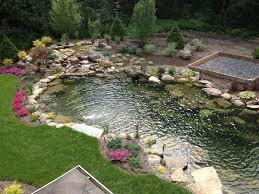 Fish For Backyard Ponds Tips For A Low Maintenance Backyard Pond Decker U0027s Ponds