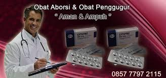 Aborsi Klinik Ntt Obat Aborsi Bengkulu Jual Cytotec Gastrul 085777972115