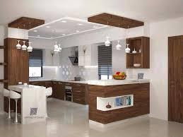Modern Wooden Kitchen Cabinets Modern Wood Kitchen Cabinets Decor Units