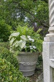 Plant Combination Ideas For Container Gardens The Basics Of Container Gardening Thrillers Fillers And Spillers
