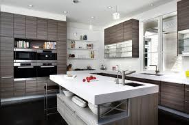 amazing kitchen designs fascinating 6 amazing modern kitchen design trends interior kitchens